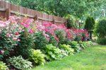 Красивое оформление клумбы возле дома своими руками – Оформление клумбы возле дома своими руками- фото красивых цветов в частном дворе