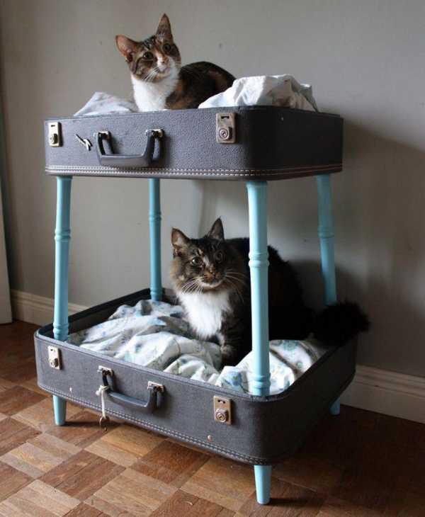 Домик для кошки своими руками: пошаговая инструкция inmyroom